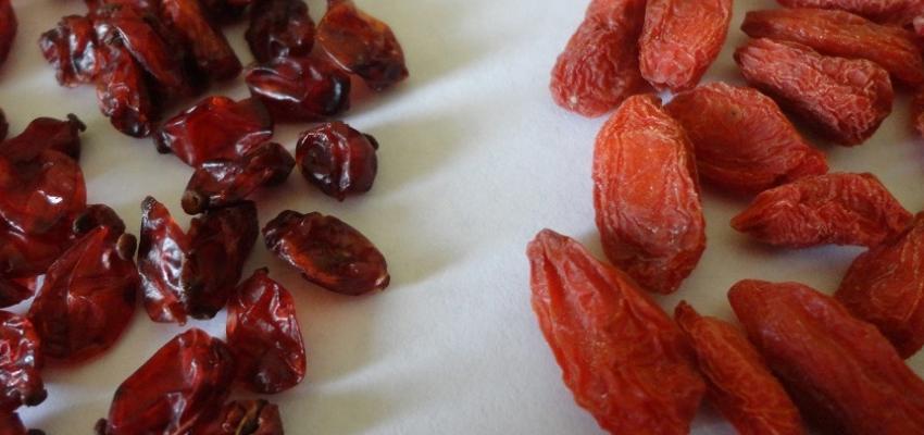 Как отличить подделку ягод Годжи?
